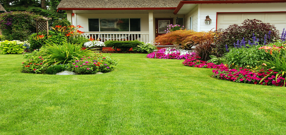 Spring Home Tips